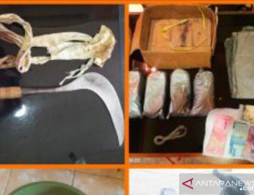 Warga Jember Bawa Bahan Peledak dan Senjata Tajam, Polisi Dilawan